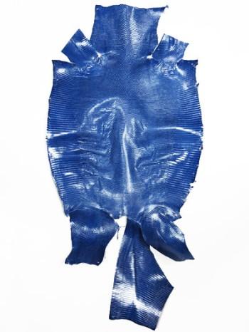 リングリザード 規格-A(ブルー 31cm)