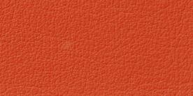 5021 オレンジ
