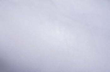 09ラベンダー